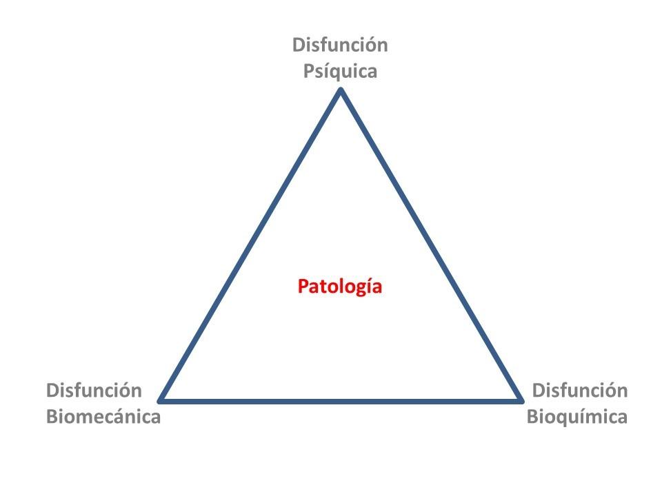 origen de las patologías